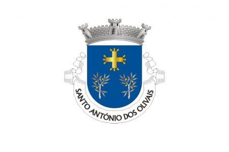 Comissão Social de Freguesia da Junta de Freguesia de Santo António dos Olivais